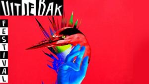 Uit Je Bak Festival: voor en door dorpsgenoten